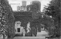 Ivy Covered Walls and Towers.jpg